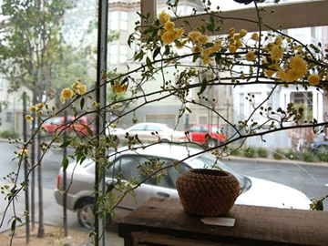 Тенты для кафе и ресторанов|тенткаферф